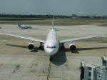 マッペケさんが、タンソンニャット国際空港で撮影したエバー航空 A330-302の航空フォト(飛行機 写真・画像)