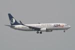 kuro2059さんが、香港国際空港で撮影した山東航空 737-85Nの航空フォト(飛行機 写真・画像)