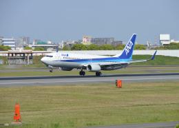 銀苺さんが、伊丹空港で撮影した全日空 737-881の航空フォト(飛行機 写真・画像)