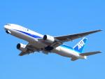 むらさめさんが、新千歳空港で撮影した全日空 777-281の航空フォト(飛行機 写真・画像)