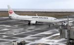 CL&CLさんが、奄美空港で撮影した日本航空 737-846の航空フォト(飛行機 写真・画像)