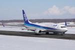神宮寺ももさんが、新千歳空港で撮影した全日空 737-881の航空フォト(飛行機 写真・画像)