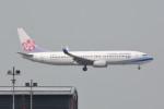 kuro2059さんが、香港国際空港で撮影したチャイナエアライン 737-8Q8の航空フォト(飛行機 写真・画像)