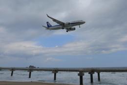 julyさんが、鳥取空港で撮影した全日空 A320-271Nの航空フォト(飛行機 写真・画像)
