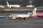 JA1118Dさんが、成田国際空港で撮影したジェットスター・ジャパン A320-232の航空フォト(飛行機 写真・画像)