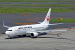 ちゃぽんさんが、中部国際空港で撮影した日本航空 737-846の航空フォト(飛行機 写真・画像)