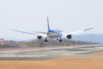TAK_HND_NRTさんが、広島空港で撮影した全日空 787-8 Dreamlinerの航空フォト(飛行機 写真・画像)