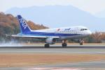 TAK_HND_NRTさんが、広島空港で撮影した全日空 A320-211の航空フォト(飛行機 写真・画像)