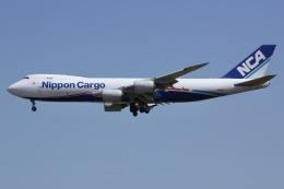 しゃこ隊さんが、成田国際空港で撮影した日本貨物航空 747-8KZF/SCDの航空フォト(飛行機 写真・画像)
