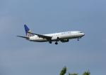 銀苺さんが、成田国際空港で撮影したユナイテッド航空 737-824の航空フォト(飛行機 写真・画像)