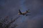 シャークレットさんが、成田国際空港で撮影したキャセイパシフィック航空 747-867F/SCDの航空フォト(飛行機 写真・画像)