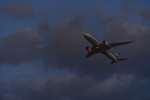 シャークレットさんが、成田国際空港で撮影した全日空 787-8 Dreamlinerの航空フォト(飛行機 写真・画像)