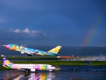 羽田空港 - Tokyo International Airport [HND/RJTT]で撮影されたソラシドエア - Solaseed Air [LQ/SNJ]の航空機写真