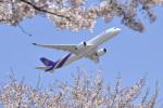 パンダさんが、成田国際空港で撮影したタイ国際航空 A350-941XWBの航空フォト(飛行機 写真・画像)