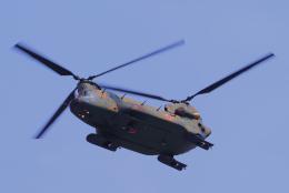 yabyanさんが、名古屋飛行場で撮影した陸上自衛隊 CH-47JAの航空フォト(飛行機 写真・画像)
