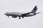 ぎんじろーさんが、成田国際空港で撮影したユナイテッド航空 737-724の航空フォト(飛行機 写真・画像)