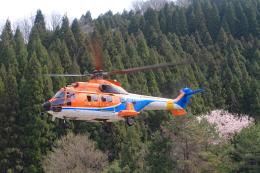batilsさんが、NO DATAで撮影した新日本ヘリコプター AS332L1 Super Pumaの航空フォト(飛行機 写真・画像)