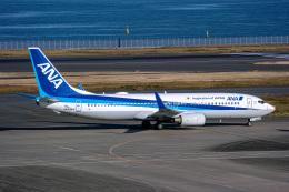 delawakaさんが、羽田空港で撮影した全日空 737-881の航空フォト(飛行機 写真・画像)