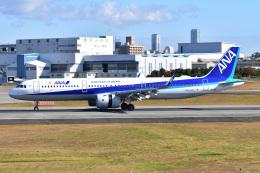 @たかひろさんが、伊丹空港で撮影した全日空 A321-272Nの航空フォト(飛行機 写真・画像)