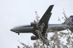 空旅さんが、福岡空港で撮影したANAウイングス 737-54Kの航空フォト(飛行機 写真・画像)