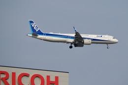 飛行機ゆうちゃんさんが、羽田空港で撮影した全日空 A321-272Nの航空フォト(飛行機 写真・画像)