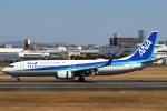 セブンさんが、伊丹空港で撮影した全日空 737-881の航空フォト(飛行機 写真・画像)