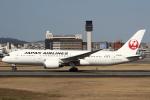 セブンさんが、伊丹空港で撮影した日本航空 787-8 Dreamlinerの航空フォト(飛行機 写真・画像)