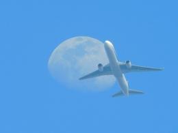 さんまるエアラインさんが、羽田空港で撮影した全日空 767-381/ERの航空フォト(飛行機 写真・画像)