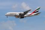 OMAさんが、シンガポール・チャンギ国際空港で撮影したエミレーツ航空 A380-861の航空フォト(飛行機 写真・画像)