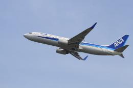 TAK_HND_NRTさんが、関西国際空港で撮影した全日空 737-881の航空フォト(飛行機 写真・画像)