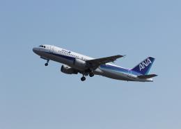 銀苺さんが、成田国際空港で撮影した全日空 A320-214の航空フォト(飛行機 写真・画像)