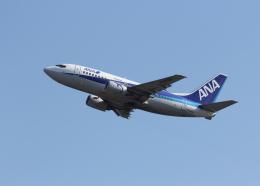 銀苺さんが、成田国際空港で撮影したエアーネクスト 737-5L9の航空フォト(飛行機 写真・画像)