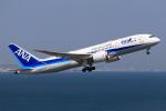 やつはしさんが、羽田空港で撮影した全日空 787-8 Dreamlinerの航空フォト(飛行機 写真・画像)