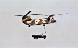 ハミングバードさんが、名古屋飛行場で撮影した航空自衛隊 CH-47Jの航空フォト(飛行機 写真・画像)