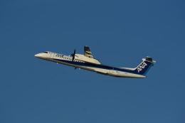 どんちんさんが、伊丹空港で撮影したANAウイングス DHC-8-402Q Dash 8の航空フォト(飛行機 写真・画像)