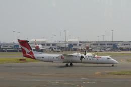 しかばねさんが、シドニー国際空港で撮影したサンステート・エアラインズ DHC-8-402Q Dash 8の航空フォト(飛行機 写真・画像)