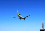 ひめままさんが、宮崎空港で撮影したソラシド エア 737-81Dの航空フォト(飛行機 写真・画像)