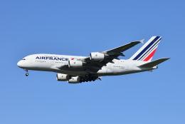 ポン太さんが、成田国際空港で撮影したエールフランス航空 A380-861の航空フォト(飛行機 写真・画像)