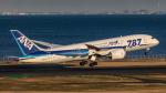 RUNWAY23.TADAさんが、羽田空港で撮影した全日空 787-8 Dreamlinerの航空フォト(飛行機 写真・画像)