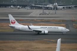武田菱さんが、羽田空港で撮影した日本航空 737-846の航空フォト(飛行機 写真・画像)