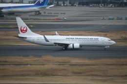 武田菱さんが、羽田空港で撮影した日本トランスオーシャン航空 737-8Q3の航空フォト(飛行機 写真・画像)