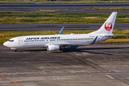 ぐっちーさんが、羽田空港で撮影した日本航空 737-846の航空フォト(飛行機 写真・画像)