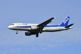 航空フォト:JA8391 全日空 A320
