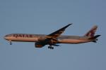 banshee02さんが、成田国際空港で撮影したカタール航空 777-3DZ/ERの航空フォト(飛行機 写真・画像)