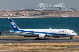 RUNWAY23.TADAさんが、羽田空港で撮影した全日空 787-9の航空フォト(飛行機 写真・画像)
