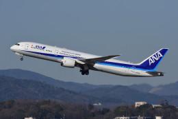 のぎスポさんが、伊丹空港で撮影した全日空 787-9の航空フォト(飛行機 写真・画像)