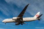 RUNWAY23.TADAさんが、成田国際空港で撮影した日本航空 787-8 Dreamlinerの航空フォト(飛行機 写真・画像)