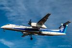RUNWAY23.TADAさんが、成田国際空港で撮影したANAウイングス DHC-8-402Q Dash 8の航空フォト(飛行機 写真・画像)