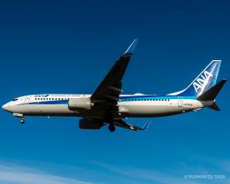 RUNWAY23.TADAさんが、成田国際空港で撮影した全日空 737-881の航空フォト(飛行機 写真・画像)