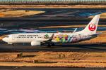 RUNWAY23.TADAさんが、羽田空港で撮影した日本航空 737-846の航空フォト(飛行機 写真・画像)